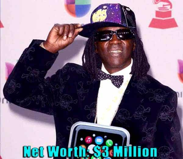 Image of Rapper, Flavor Flav net worth is $3 million