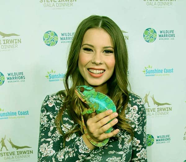 Image of Steve Irwin daughter Bindi Irwin